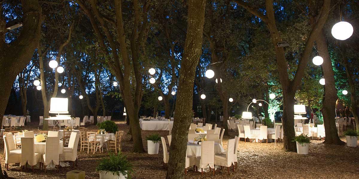 Matrimonio Tema Bosco : Matrimonio nel bosco da favola in puglia